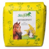 Stiefel Pferde Zusatzfutter Arthrophyt für Gelenke und Sehnen