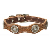 Western Edge Dog Collar