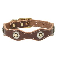 Lonestar Legend Collar