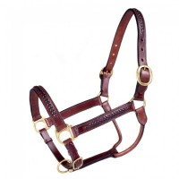 Braided Leather Halter