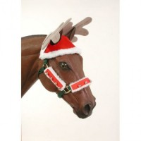 Holiday Reindeer Hat