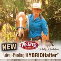 Hybrid Halter