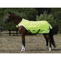 Horse-Trainer Rug SHINE