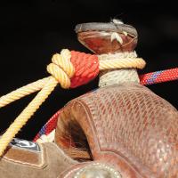 Rattler Horn Knots