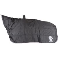 Horse and Saddle Cover